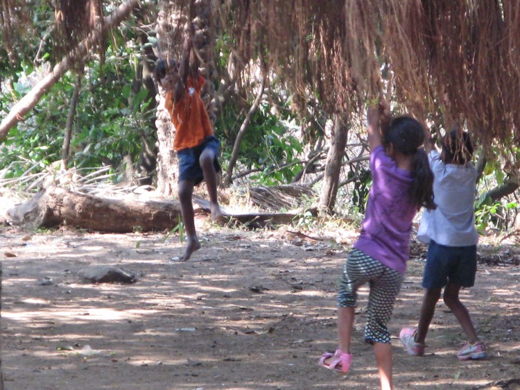 Kids swinging on Banyan Roots.JPG