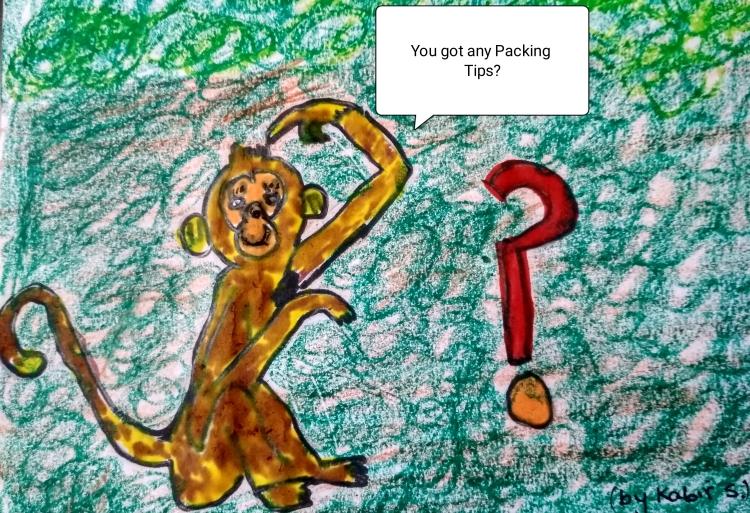 monkey-packing-tips.jpg