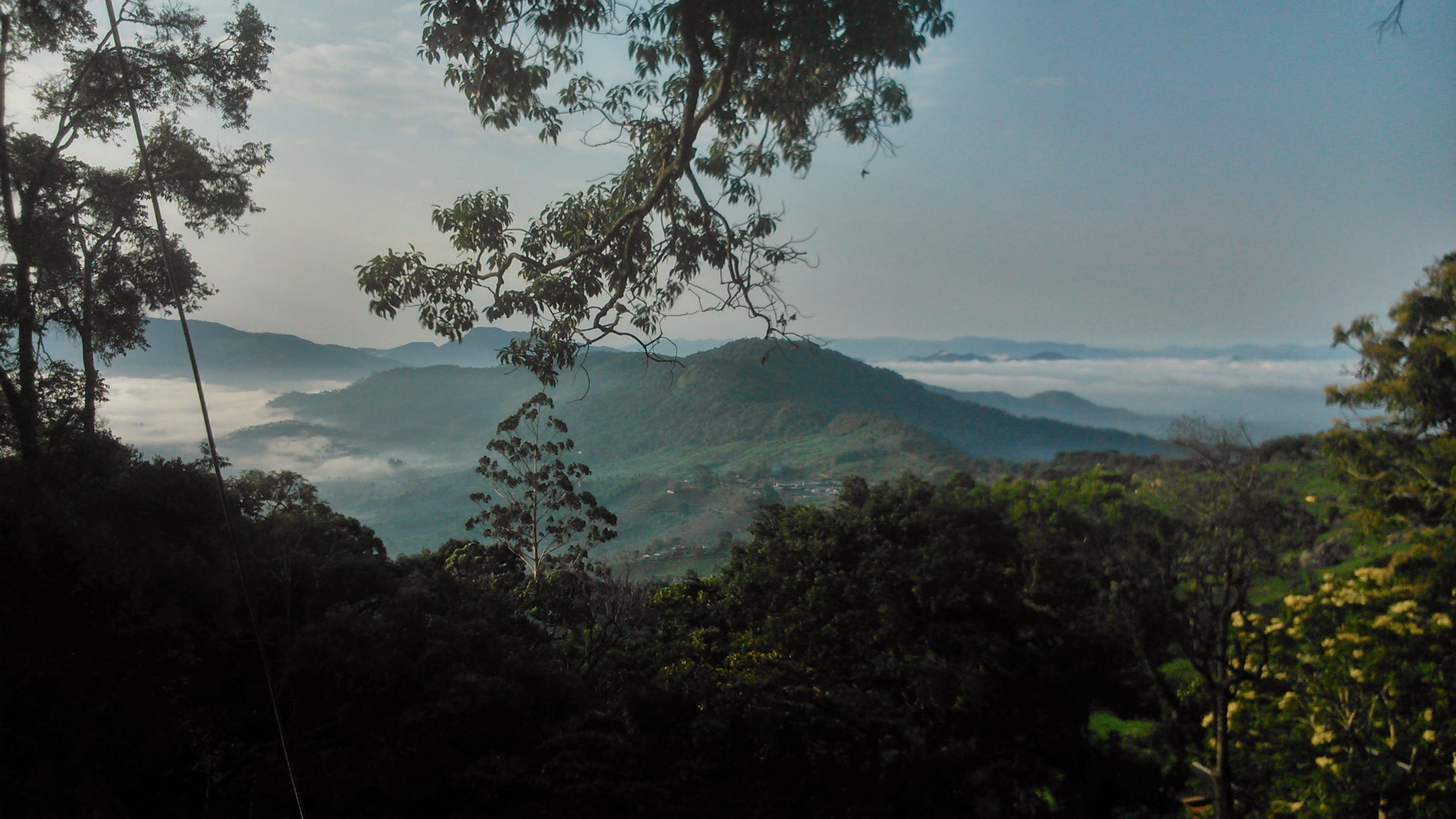 Munnar Above the Clouds
