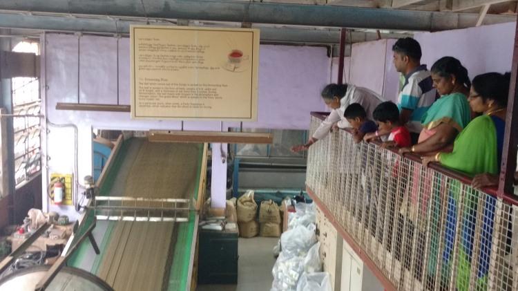 Tea factory tours.jpg