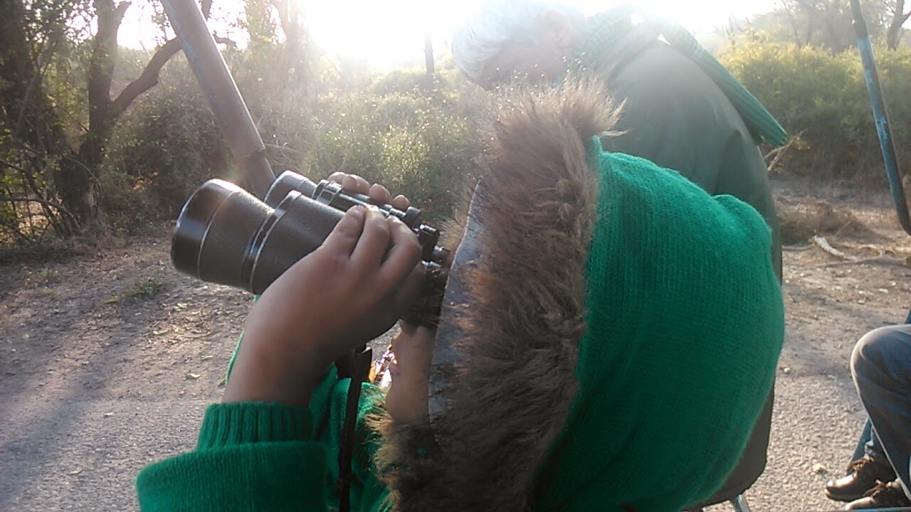 Using Binoculars.jpg