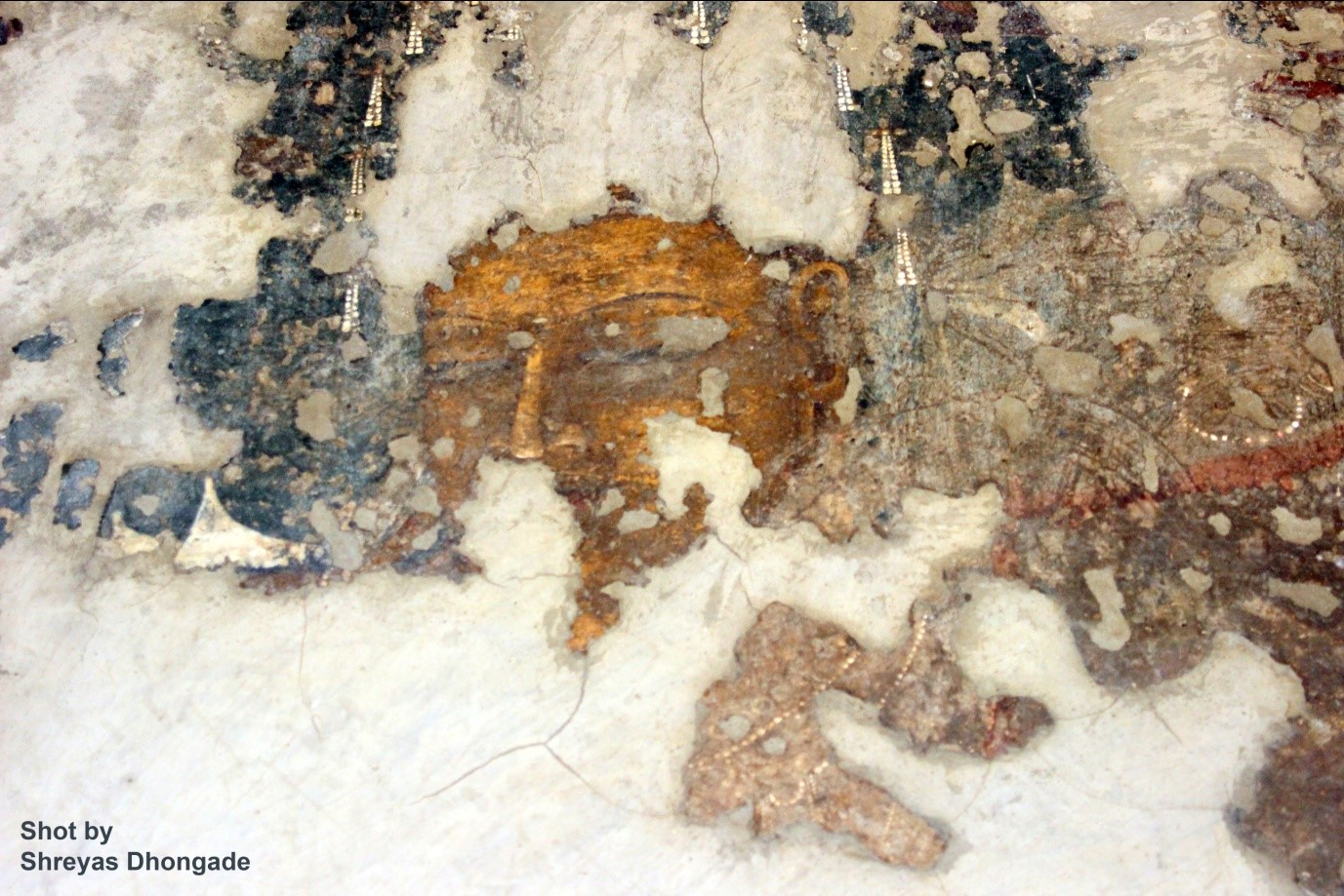 Shreyas Wall Mural Ajanta