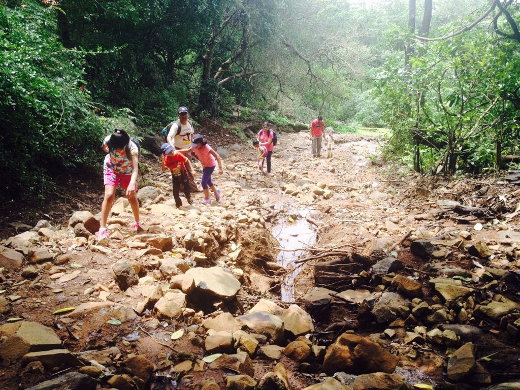 kids trekking