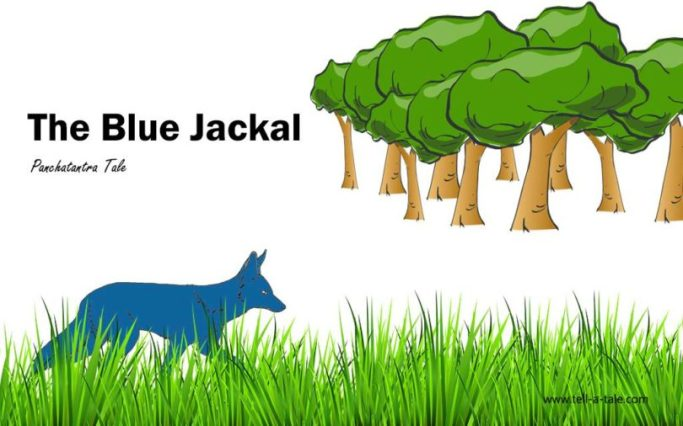 The-Blue-Jackal-810x506.jpg