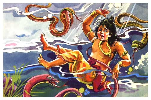 bhima snakes poison.jpg