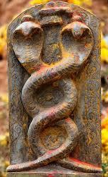 India The Land Of Snakes And Serpents Part II As Symbols