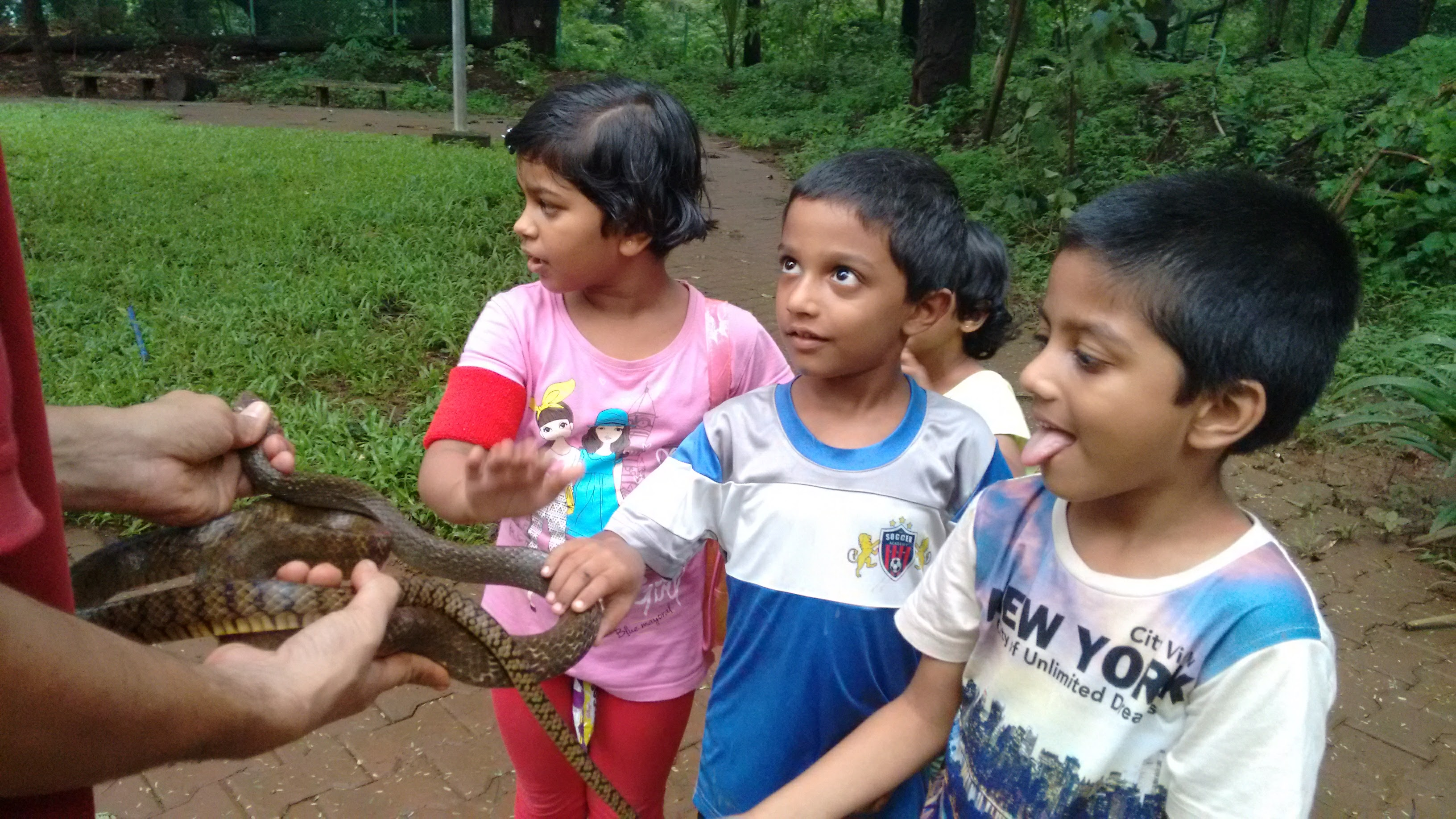 snake - Madhu.jpg